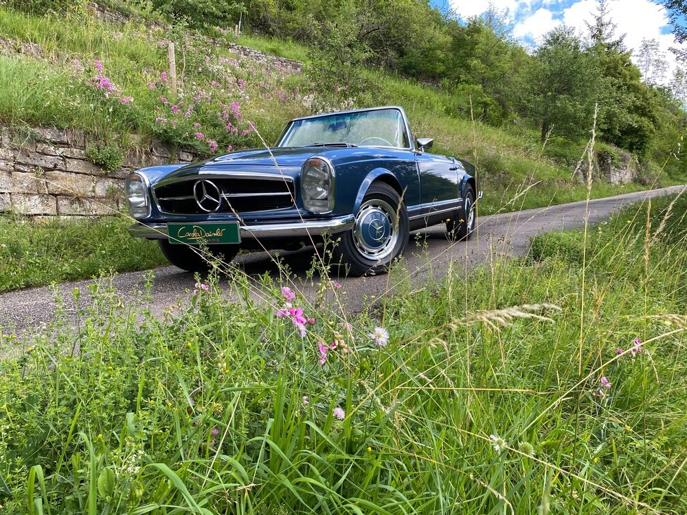 Carola Daimler Cars | Fahrzeuge Partner